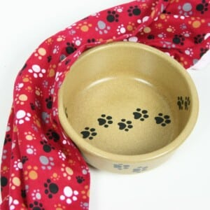 Large Pet Dishes